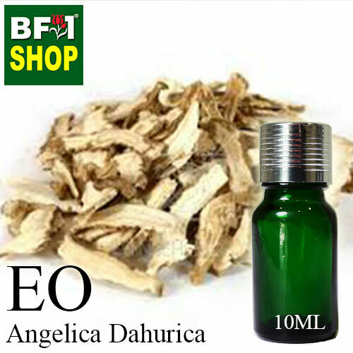 Essential Oil - Angelica Dahurica - 10ml