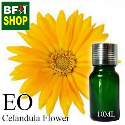 Essential Oil - Calendula Flower - 10ml