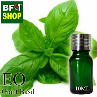 Essential Oil - Basil - Sweet Basil ( Giant Basil ) - 10ml