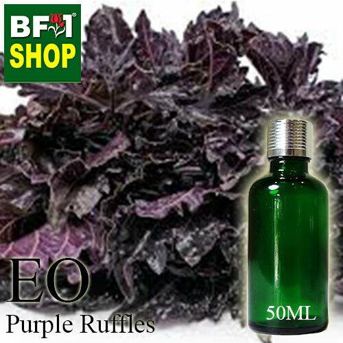 Essential Oil - Basil - Purple Ruffles Basil - 50ml