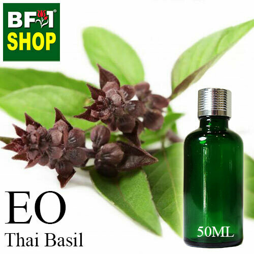 Essential Oil - Basil - Cinnamon Basil ( Thai Basil ) - 50ml