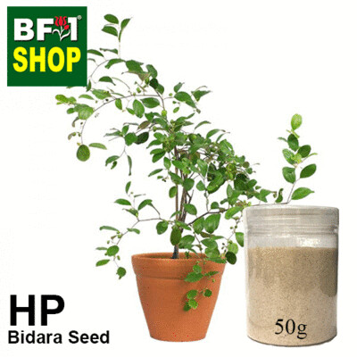 Herbal Powder - Bidara Seed ( Zizyphus Mauritiana ) Herbal Powder - 50g