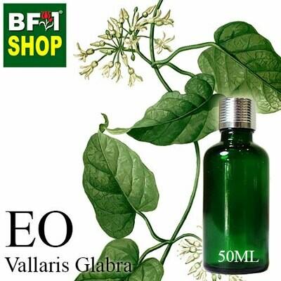 Essentail Oil - Vallaris Glabra - 50ml