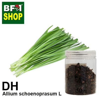 Dry Herbal - Chive ( Allium schoenoprasum L ) - 50g
