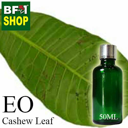 Essential Oil - Cashew Leaf ( Anacardium Occidentale ) - 50ml