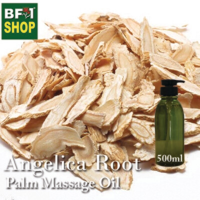 Palm Massage Oil - Angelica Root - 500ml