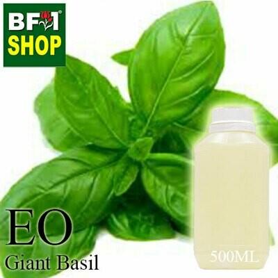 Essential Oil - Basil - Sweet Basil ( Giant Basil ) - 500ml