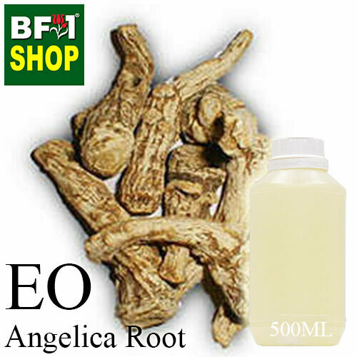 Essential Oil - Angelica Root - 500ml