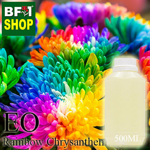 Essential Oil - Chrysanthemum - Rainbow Chrysanthemum - 500ml