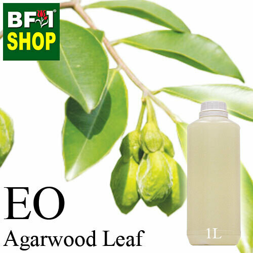 Essential Oil - Agarwood Leaf - 1L