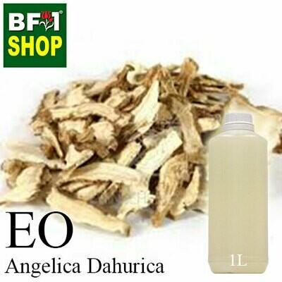 Essential Oil - Angelica Dahurica - 1L