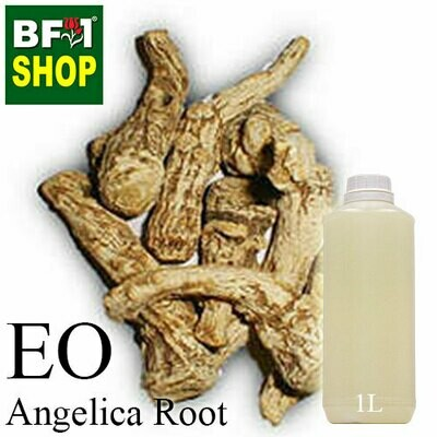 Essential Oil - Angelica Root - 1L