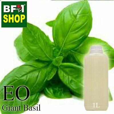 Essential Oil - Basil - Sweet Basil ( Giant Basil ) - 1L