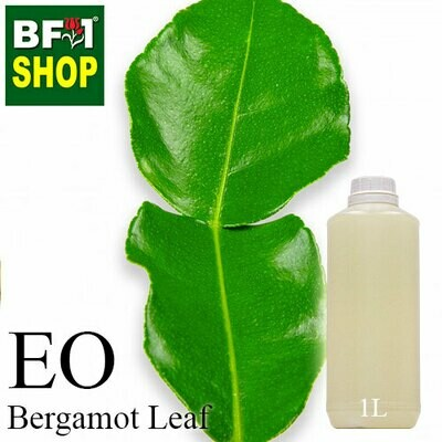 Essential Oil - Bergamot Leaf - 1L