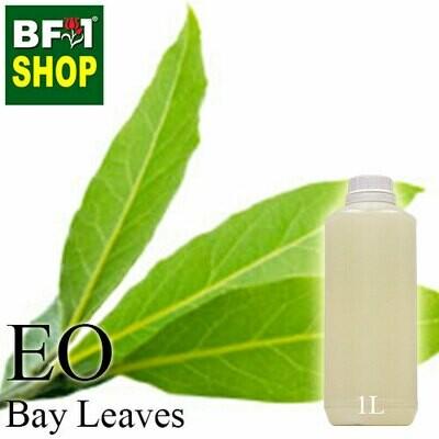 Essential Oil - Bay Leaf - 1L