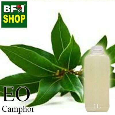 Essential Oil - Camphor - 1L