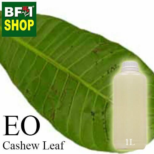 Essential Oil - Cashew Leaf ( Anacardium Occidentale ) - 1L