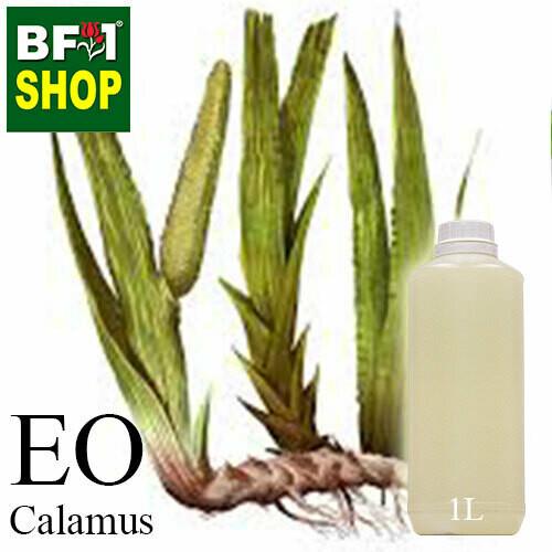Essential Oil - Calamus - 1L
