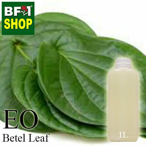 Essential Oil - Betel Leaf ( Daun Sireh ) - 1L