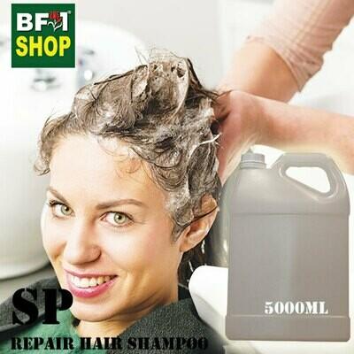 SP - Repair Hair Shampoo - 5000ml