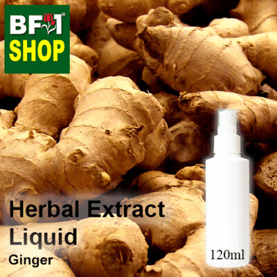 Herbal Extract Liquid - Ginger Herbal Water - 120ml