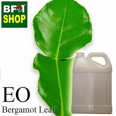 Essential Oil - Bergamot Leaf - 5L