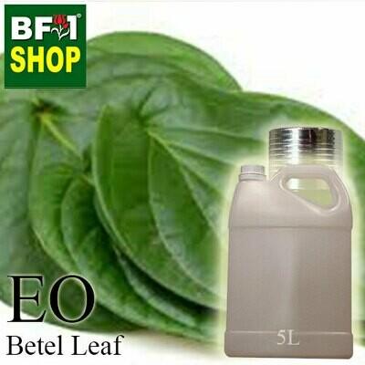 Essential Oil - Betel Leaf ( Daun Sireh ) - 5L