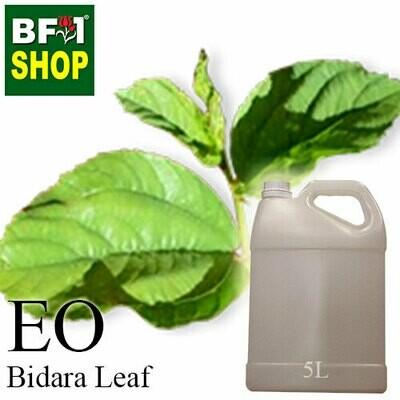 Essential Oil - Bidara Leaf (Zizyphus Mauritiana )  - 5L