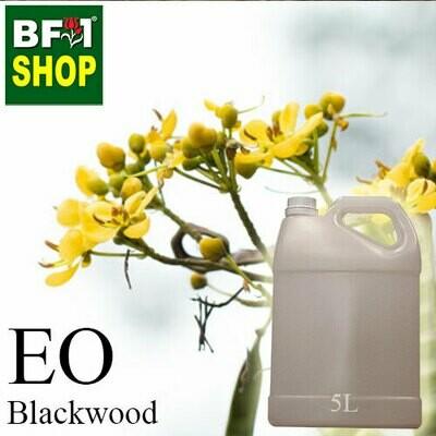Essential Oil - Black Wood - 5L