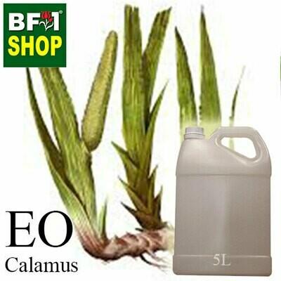 Essential Oil - Calamus - 5L