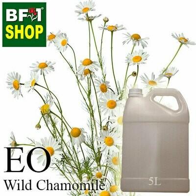 Essential Oil - Chamomile - Wild Chamomile - 5L