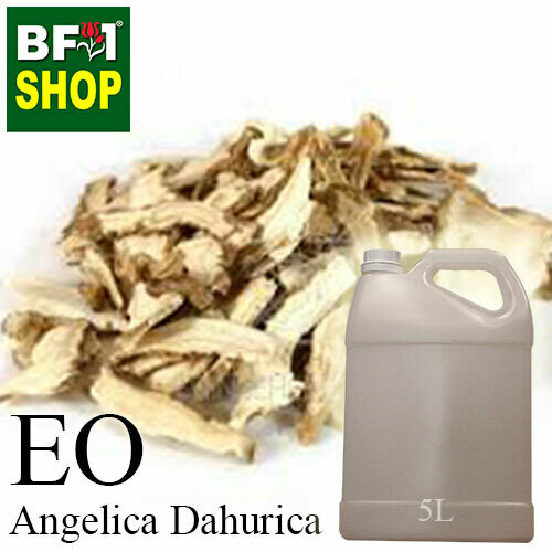 Essential Oil - Angelica Dahurica - 5L