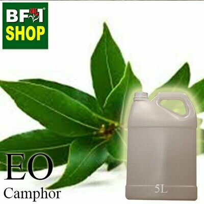 Essential Oil - Camphor - 5L