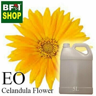Essential Oil - Calendula Flower - 5L