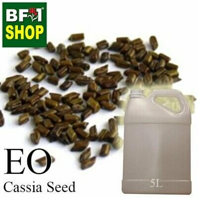 Essential Oil - Cassia seed - 5L