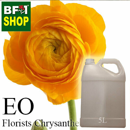 Essential Oil - Chrysanthemum - Florists Chrysanthemum - 5L