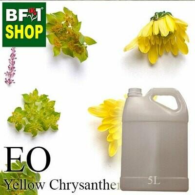 Essential Oil - Chrysanthemum - Yellow Chrysanthemum - 5L