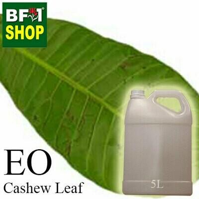 Essential Oil - Cashew Leaf ( Anacardium Occidentale ) - 5L