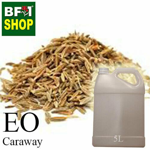 Essential Oil - Caraway - 5L