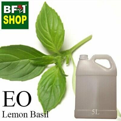 Essential Oil - Basil - Lemon Basil ( Citriodorum Basil ) - 5L