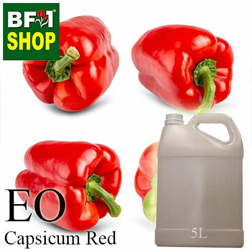 Essential Oil - Capsicum Red - 5L