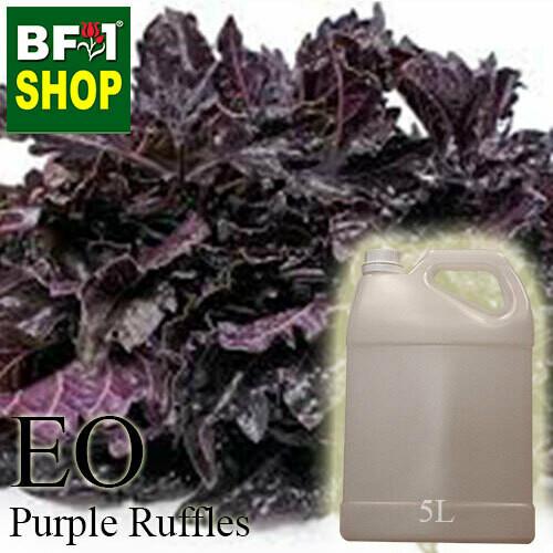 Essential Oil - Basil - Purple Ruffles Basil - 5L
