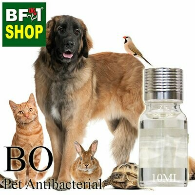 Blended Oil - Pet Antibacterial - 10ml