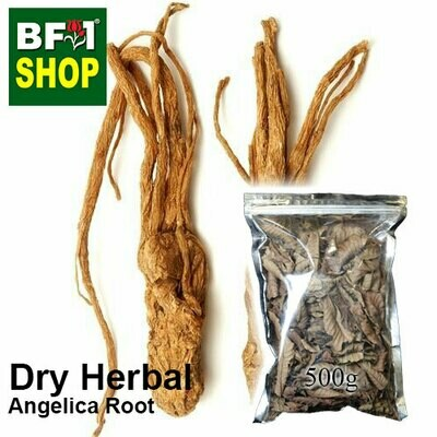 Dry Herbal - Angelica Root - 500g