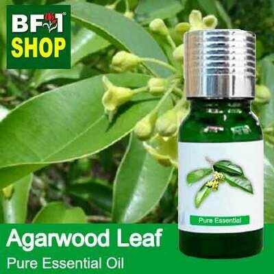 Pure Essential Oil (EO) - Agarwood Leaf Essential Oil - 10ml