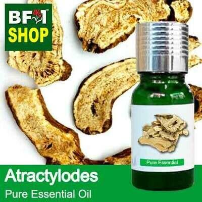 Pure Essential Oil (EO) - Atractylodes Essential Oil - 10ml