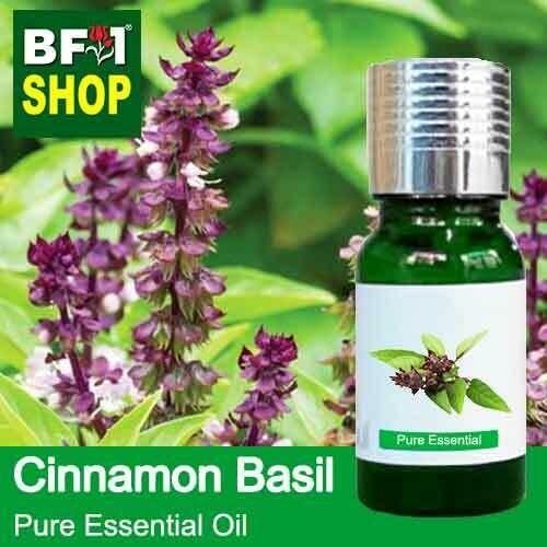 Pure Essential Oil (EO) - Basil - Cinnamon Basil ( Thai Basil ) Essential Oil - 10ml
