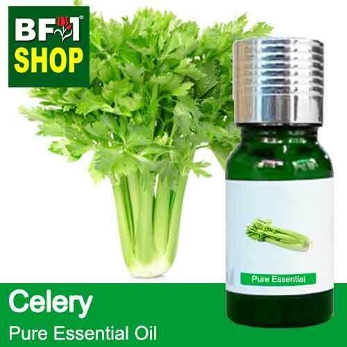 Pure Essential Oil (EO) -  Celery Essential Oil - 10ml