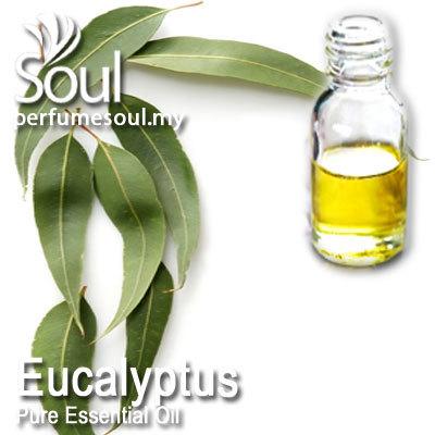 Pure Essential Oil - Eucalyptus Oil