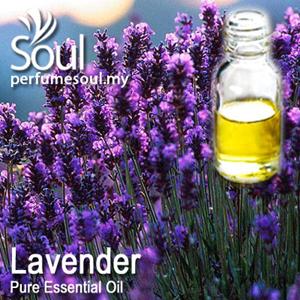 Pure Essential Oil - Lavender Oil